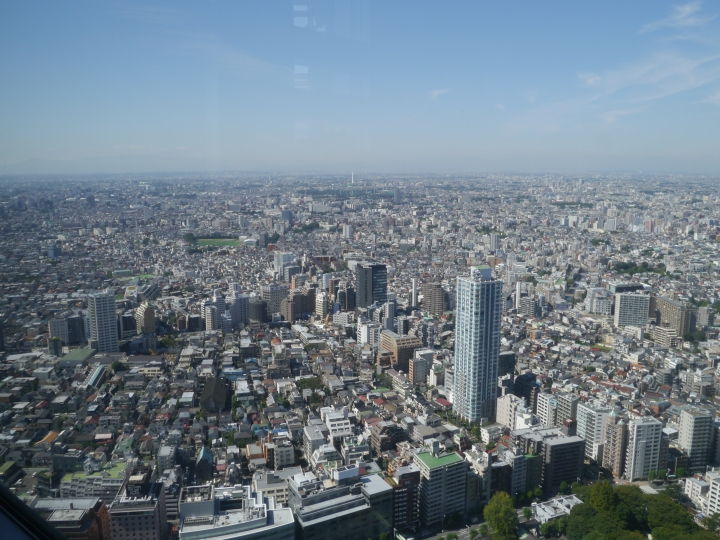 The view of Tokyo from the Government Towers